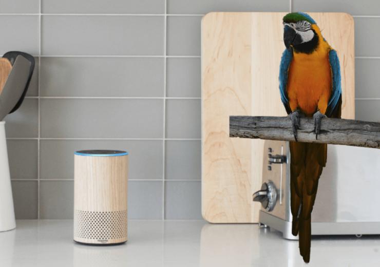 Parrot Alexa