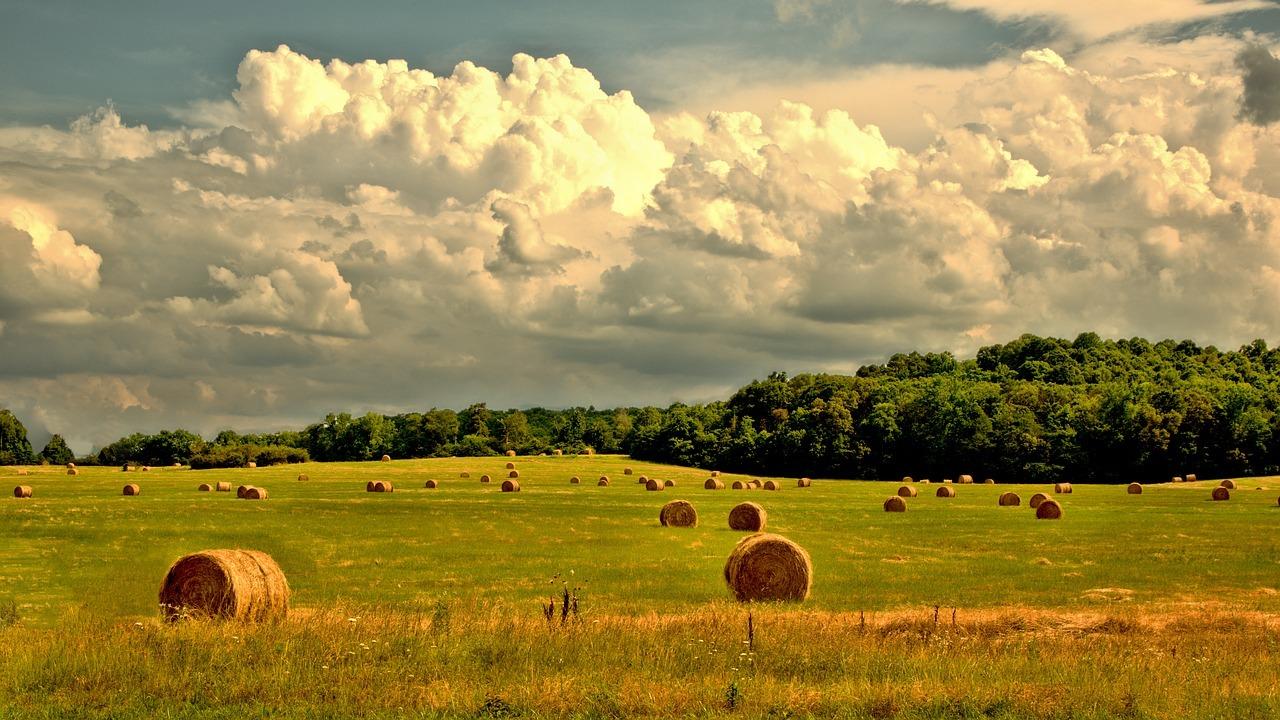5g rural internet